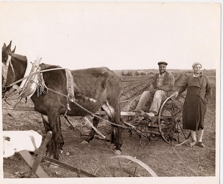 picture of doris miller's parents